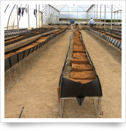 Greenhouse Structure